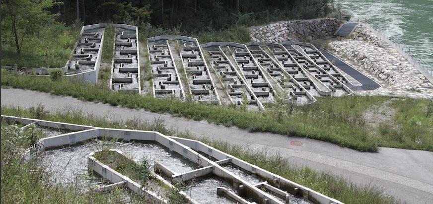 Fishpass am Kraftwerk Schwabeck an der Drau